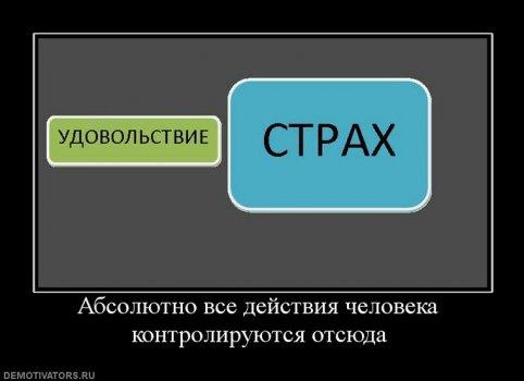 327770_absolyutno_vse_dejstviya_cheloveka_kontroliruyutsya_otsyuda.jpg
