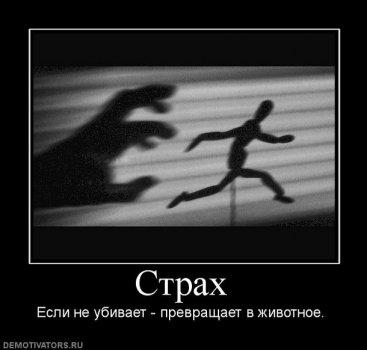 43182_strah.jpg
